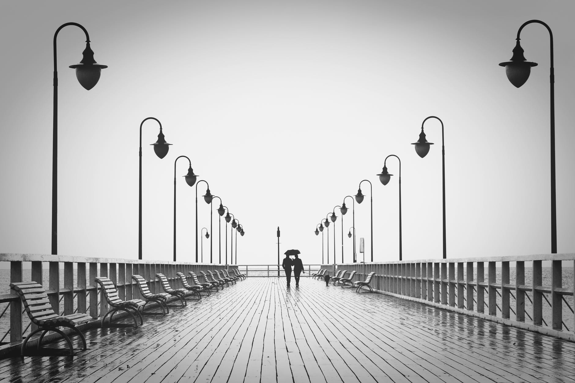 affection benches black and white boardwalk